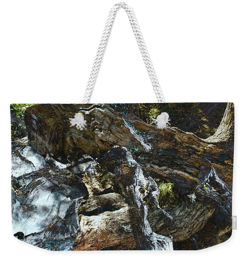 Trees Weekender Tote Bag featuring the photograph Washed Away by Kelly Jade King