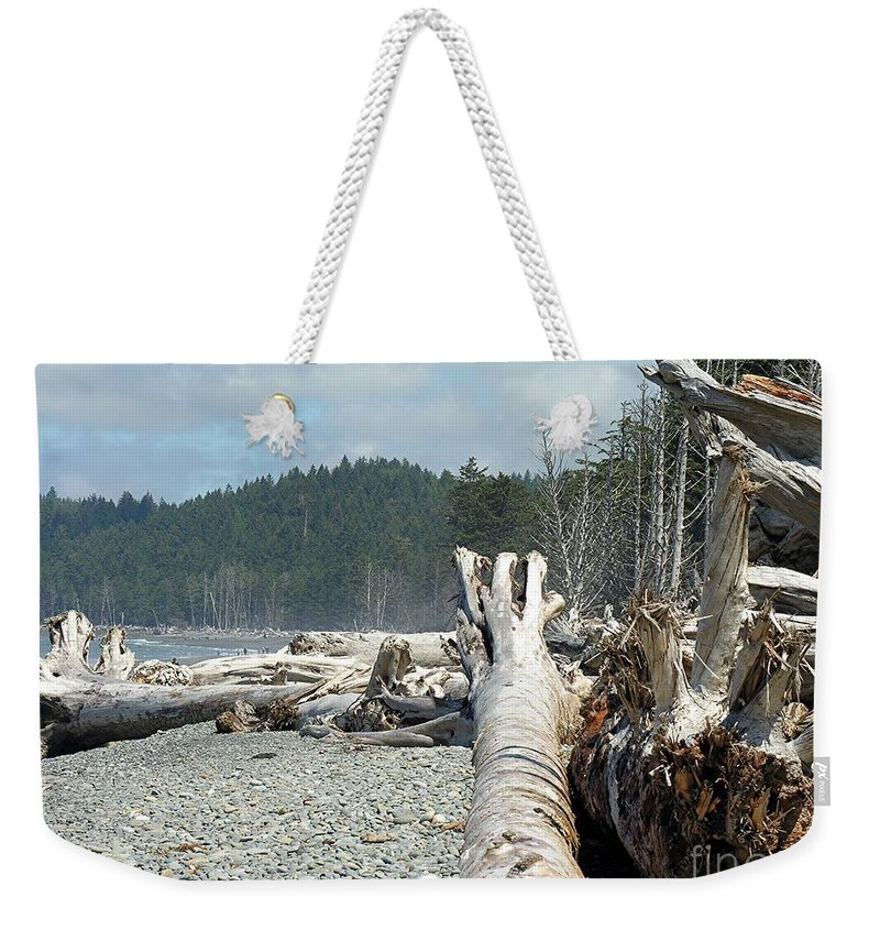 Tree Weekender Tote Bag featuring the photograph Washington Beach by Diane Greco-Lesser