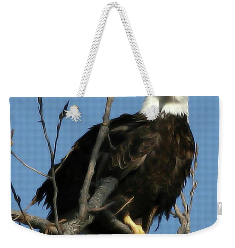 Eagle Weekender Tote Bag featuring the photograph Watch On The Fox by Tommy Anderson