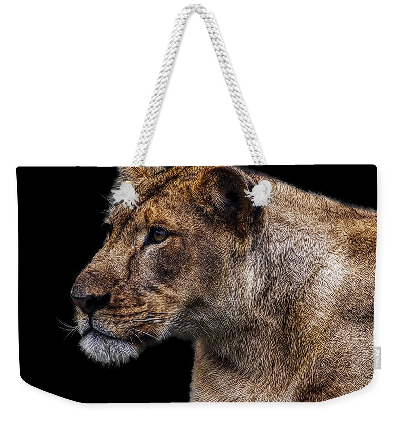 Lion Weekender Tote Bag featuring the photograph Watching Closely by Janet Fikar