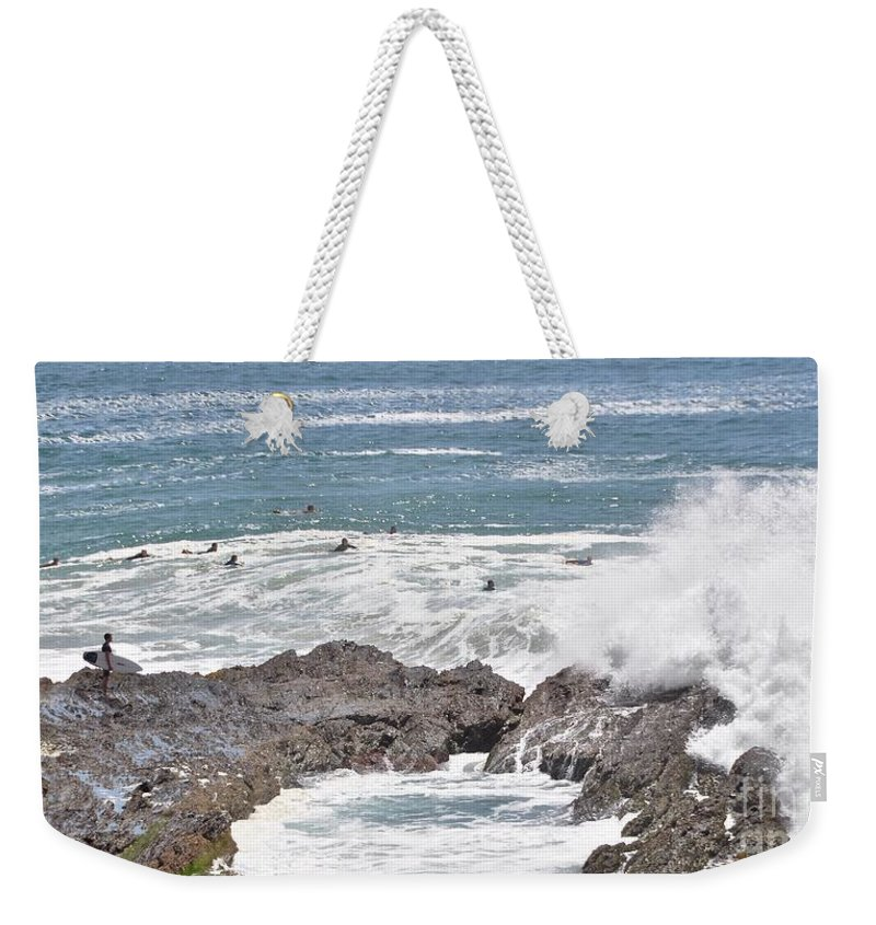 Gold Coast Weekender Tote Bag featuring the photograph Watching For Akaw by Csilla Florida