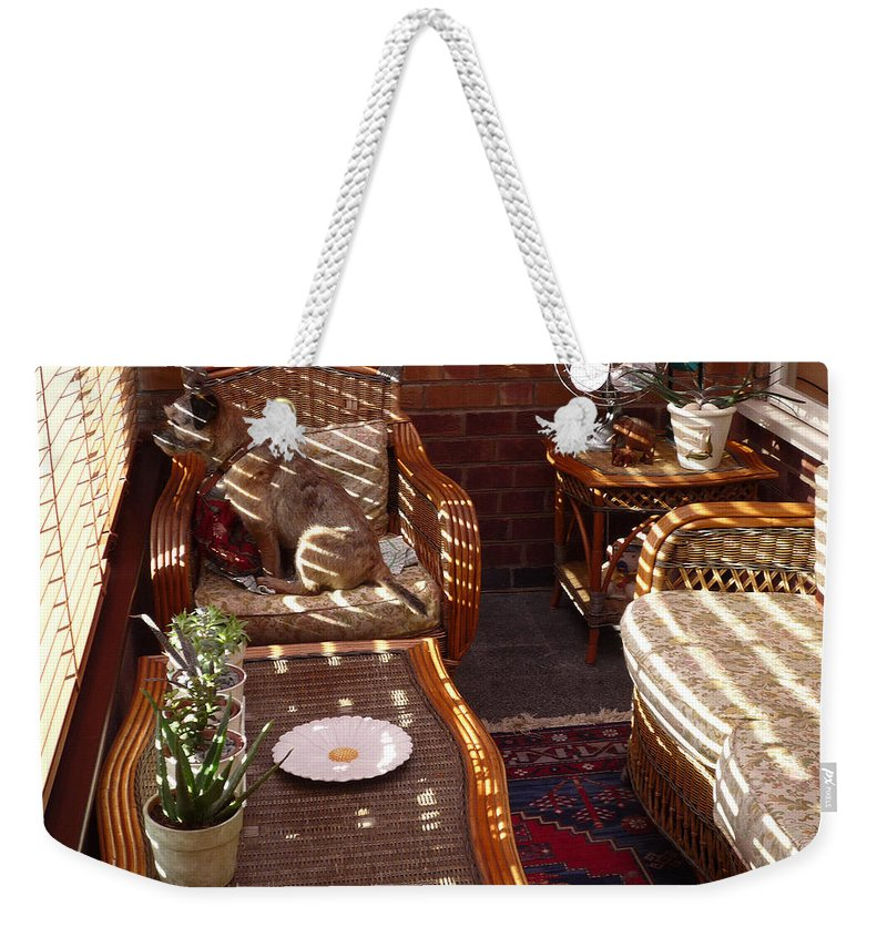 Puppy Weekender Tote Bag featuring the photograph Watching The Squirrels by Charles Stuart