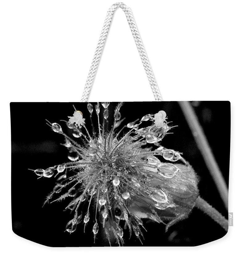 Lehtokukka Weekender Tote Bag featuring the photograph Wate Awens by Jouko Lehto