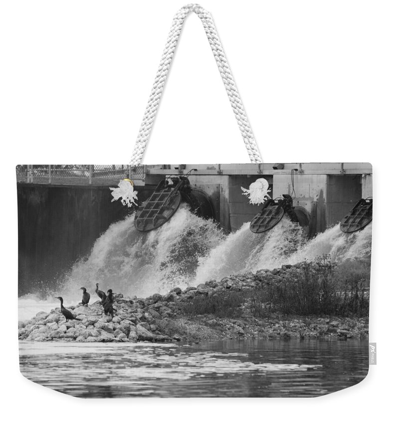 Water Weekender Tote Bag featuring the photograph Water Birds by Rob Hans