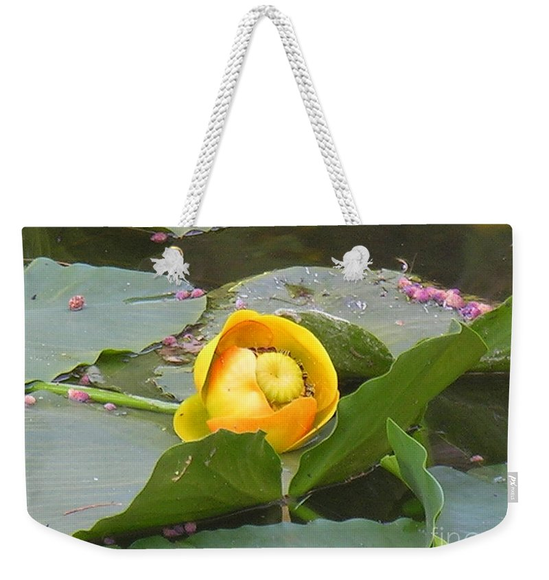 Water Weekender Tote Bag featuring the photograph Water Lilly by Diane Greco-Lesser