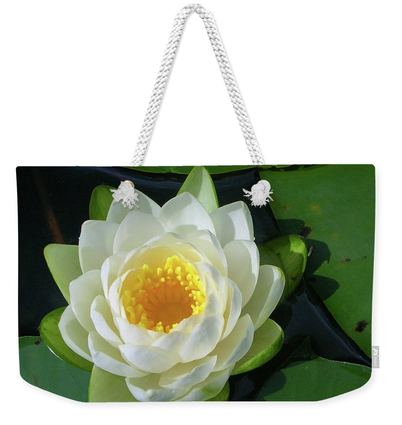 Cassadaga Lakes Weekender Tote Bag featuring the photograph Water Lily 3437 by Guy Whiteley
