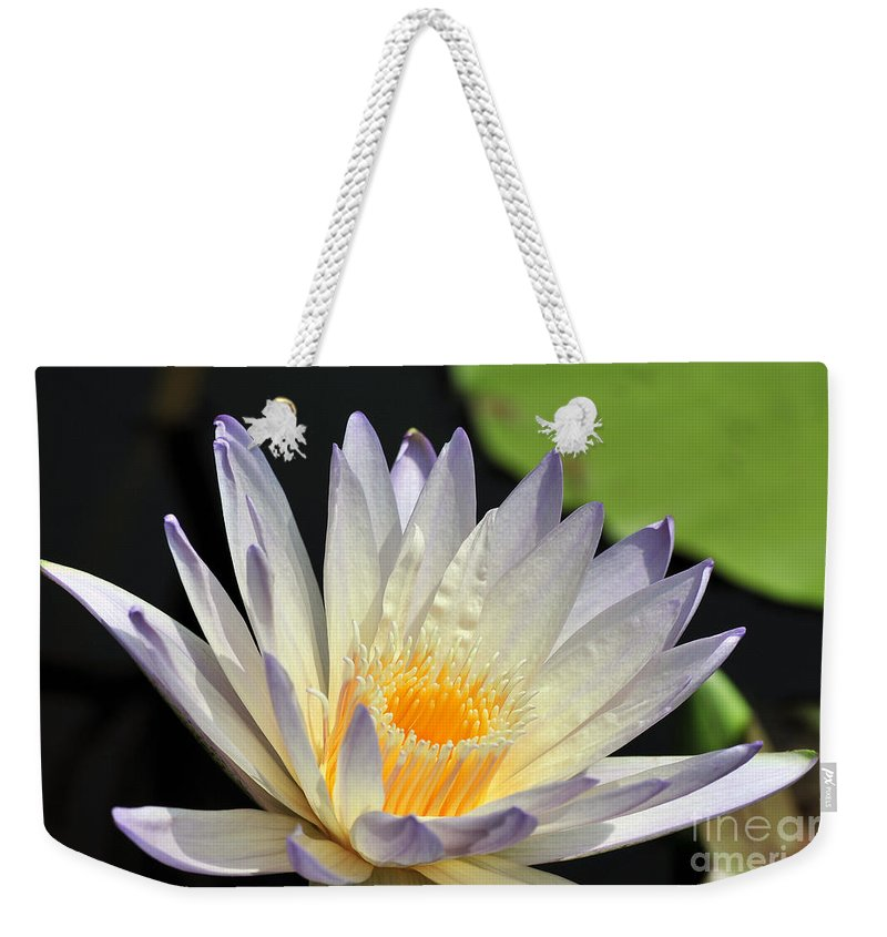 Water Lily Weekender Tote Bag featuring the photograph water lily 48 Green Smoke by Terri Winkler