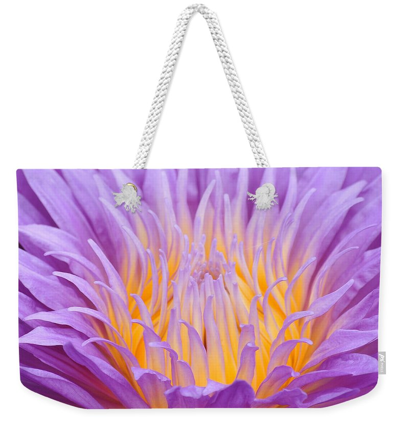 Water Weekender Tote Bag featuring the photograph water lily 55 Ultraviolet by Terri Winkler