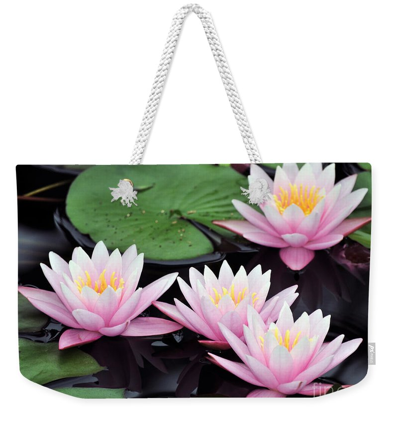 Water Lilies Weekender Tote Bag featuring the photograph water lily 91 Sunny Pink Water Lily by Terri Winkler