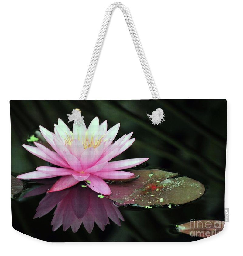 Lwater Lilies Weekender Tote Bag featuring the photograph water lily 92 Sunny Pink Water Lily with Lily Pad by Terri Winkler