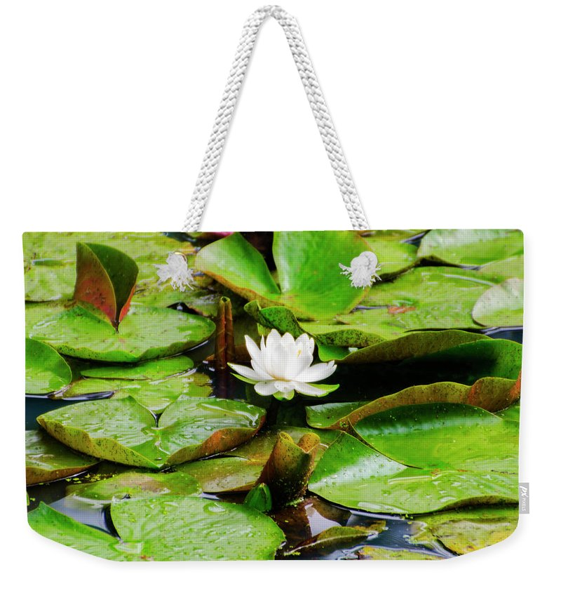 Water Weekender Tote Bag featuring the photograph Water Lily by Bill Cannon