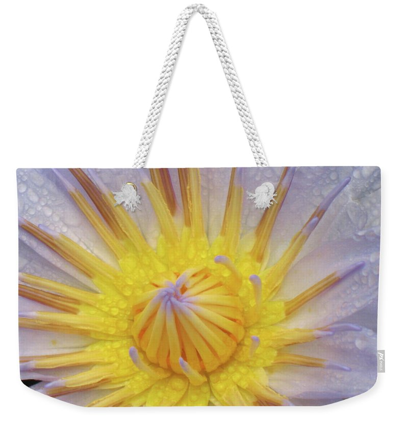 Water Lily Yellow Blue Purple Close-up Weekender Tote Bag featuring the photograph Water Lily by Christina Geiger