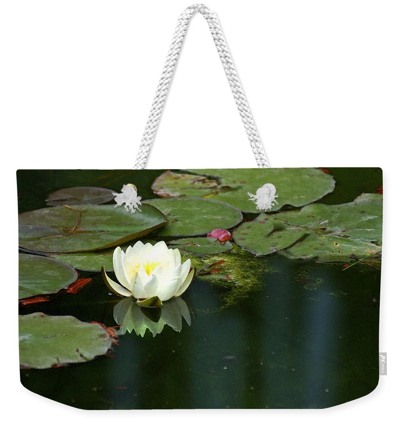 Lily Weekender Tote Bag featuring the photograph Water Lily by Heather Coen