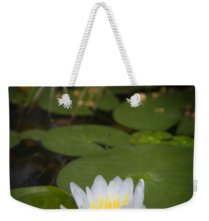 Water Weekender Tote Bag featuring the photograph Water Lily IIi by Ricky Barnard