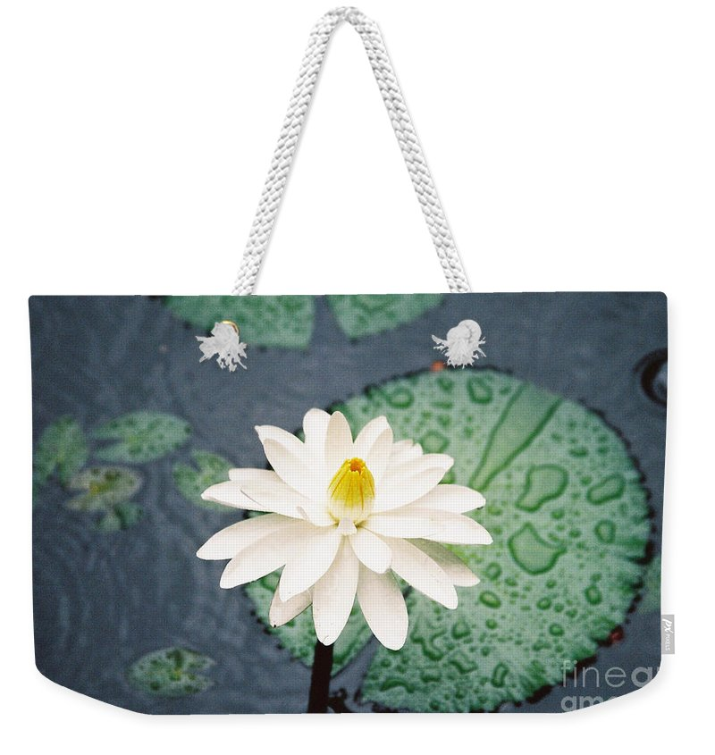 Flowers Weekender Tote Bag featuring the photograph Water Lily by Kathy McClure