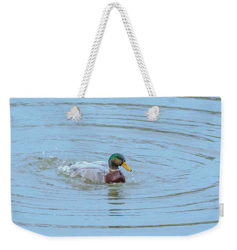 Male Weekender Tote Bag featuring the photograph Water Off A Ducks Back by Allan Levin