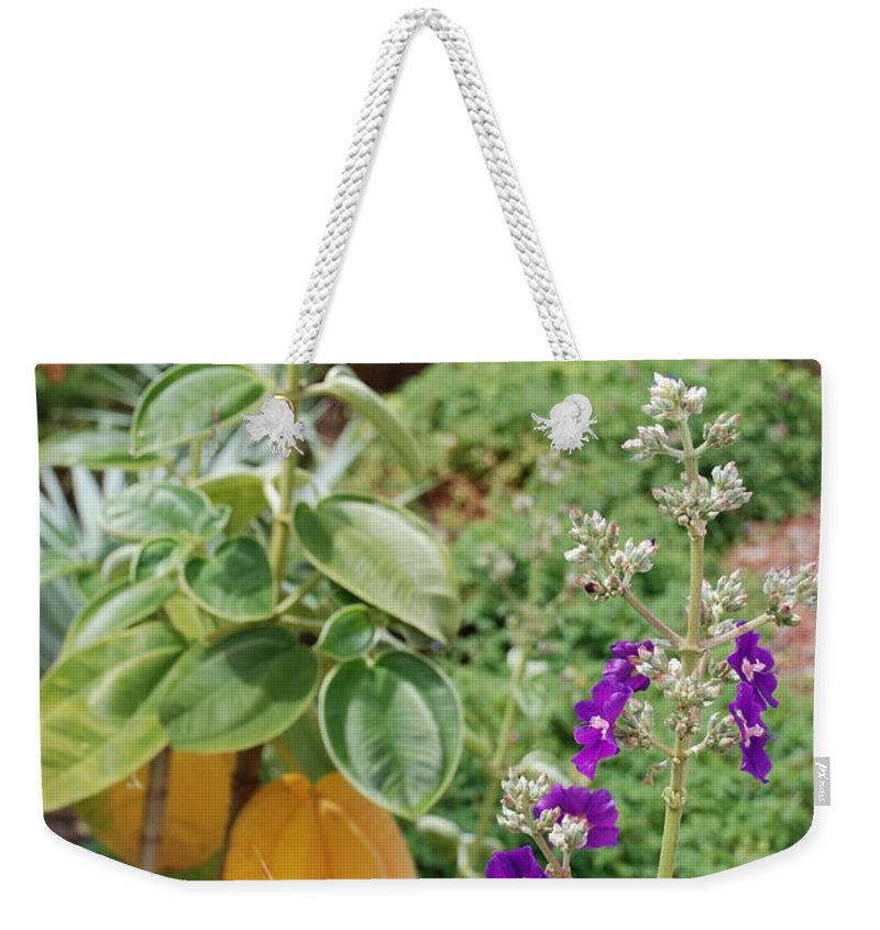 Water Weekender Tote Bag featuring the photograph Water Plants And Flower by Rob Hans