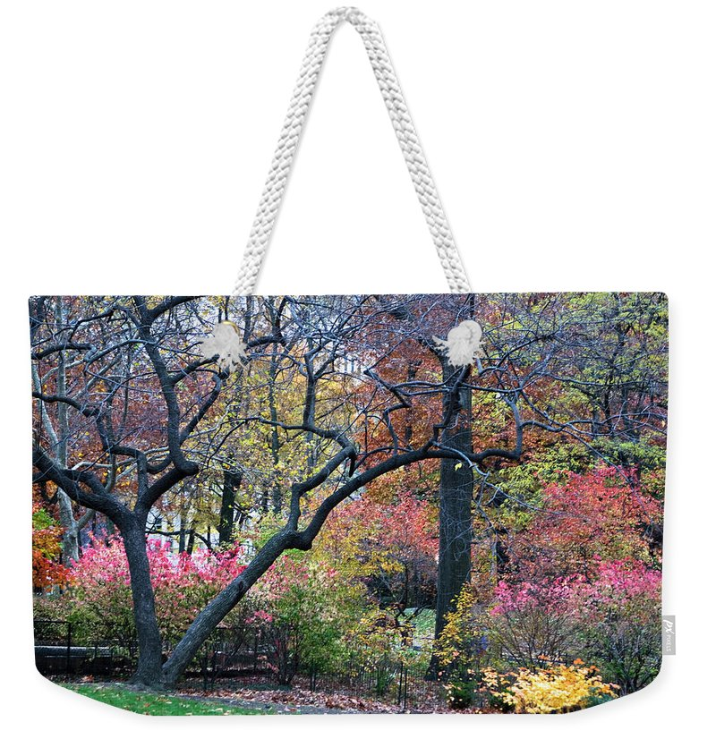 Forest Weekender Tote Bag featuring the photograph Watercolor Forest by Lorraine Devon Wilke