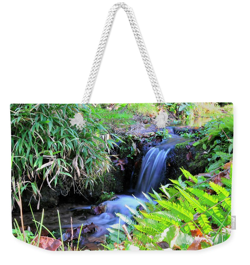 Water. Waterfall Weekender Tote Bag featuring the photograph Waterfall In The Fern Garden by David Arment