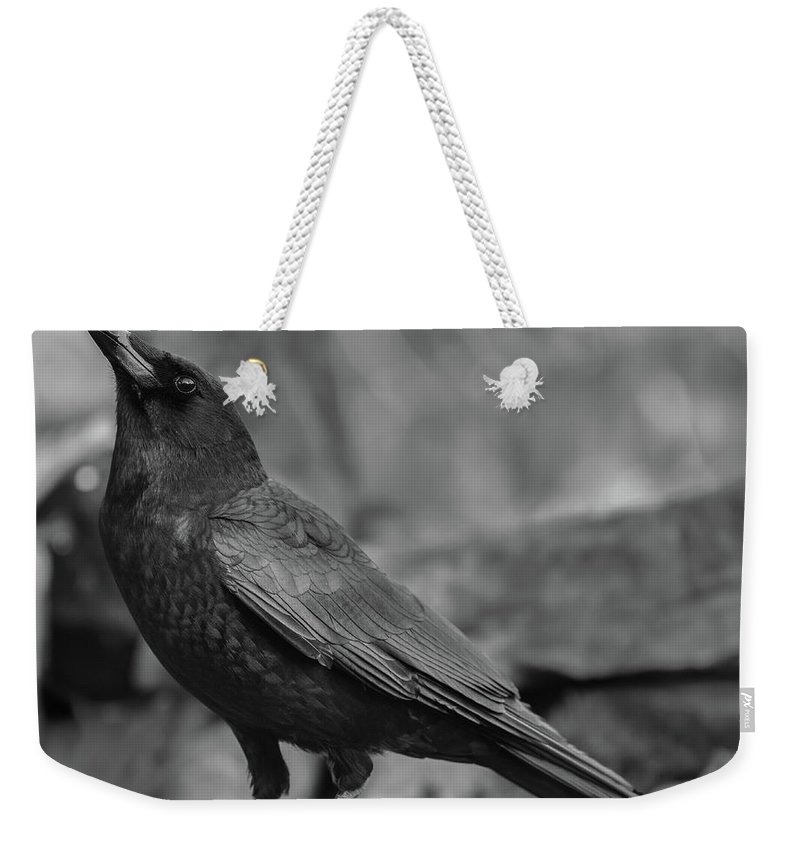 Crow - Rae Ann M. Garrett - Black And White Photography - Images Of Crows - Corvids- Mother Crow- For People Who Love Crows - Crow Lovers - International Known Artist - Professional Artists- Weekender Tote Bag featuring the photograph Waterfall by Rae Ann M Garrett