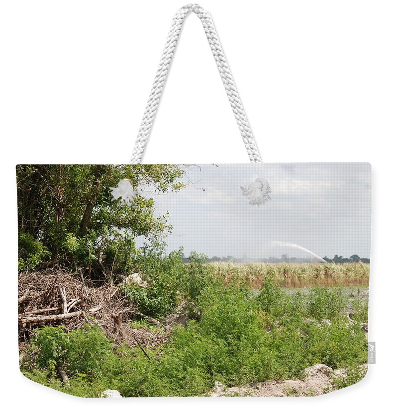 Leaves Weekender Tote Bag featuring the photograph Watering The Weeds by Rob Hans