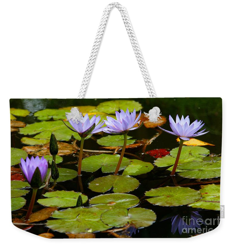 Pond Weekender Tote Bag featuring the photograph Waterlilies by Gaspar Avila