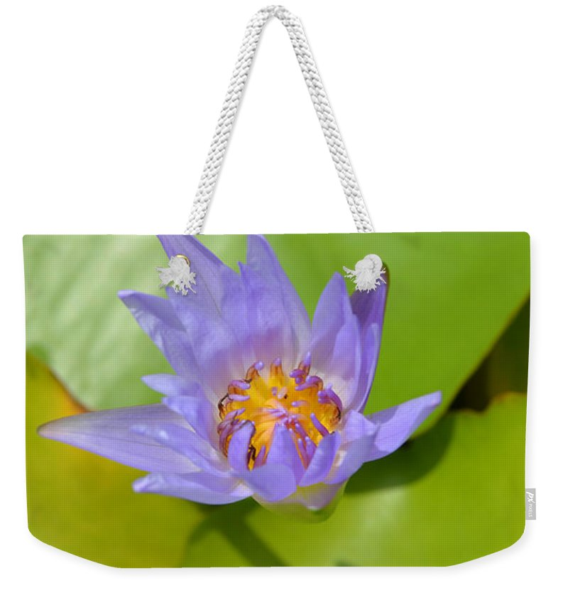 Purple Weekender Tote Bag featuring the photograph Waterlily Shadow Of Perfection by AEC - Abundant Eight Creative