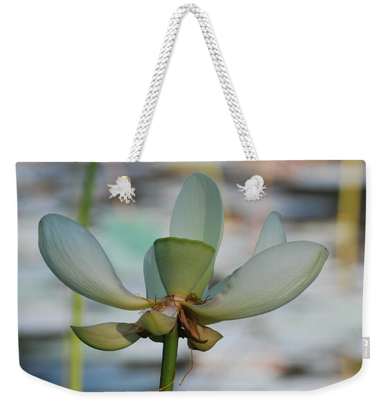 Botanical Weekender Tote Bag featuring the photograph Waterlily Wash Vertical by Heather Kirk