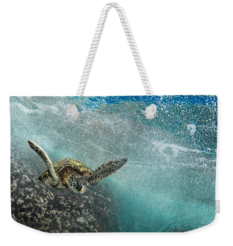 Sea Turtle Weekender Tote Bag featuring the photograph Wave Rider Turtle by Leonardo Dale
