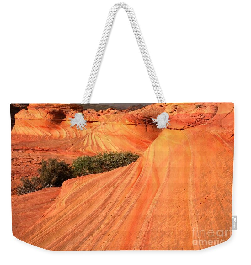 The Wave Weekender Tote Bag featuring the photograph Wavy Sunset Curves by Adam Jewell