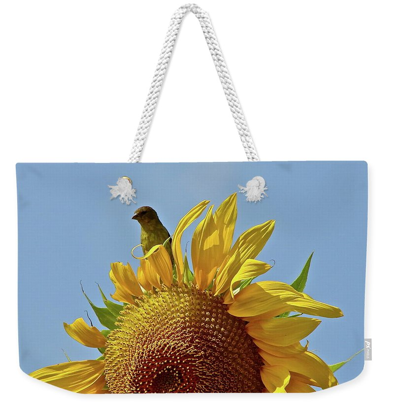 Flower Weekender Tote Bag featuring the photograph We Match by Diana Hatcher