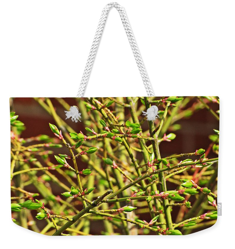 Blooming Weekender Tote Bag featuring the photograph We Must Be Willing by Jessica Tolemy