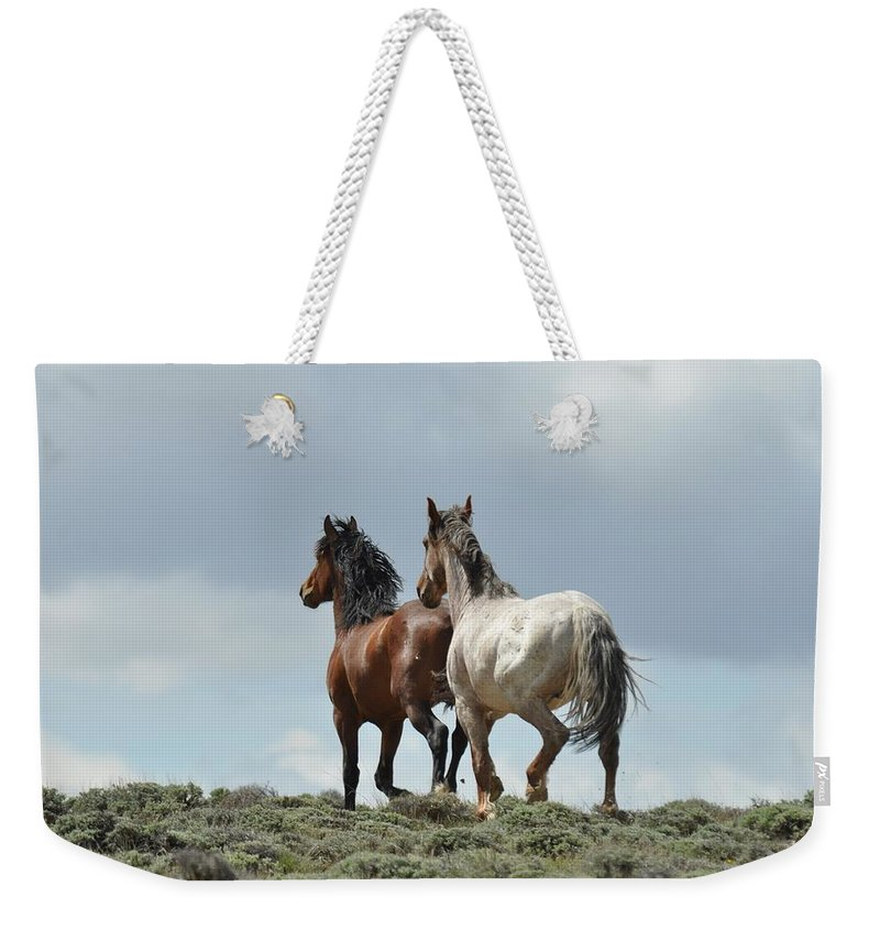 Wild Horses Weekender Tote Bag featuring the photograph We Will Be Over the Hill in a Few Seconds by Frank Madia