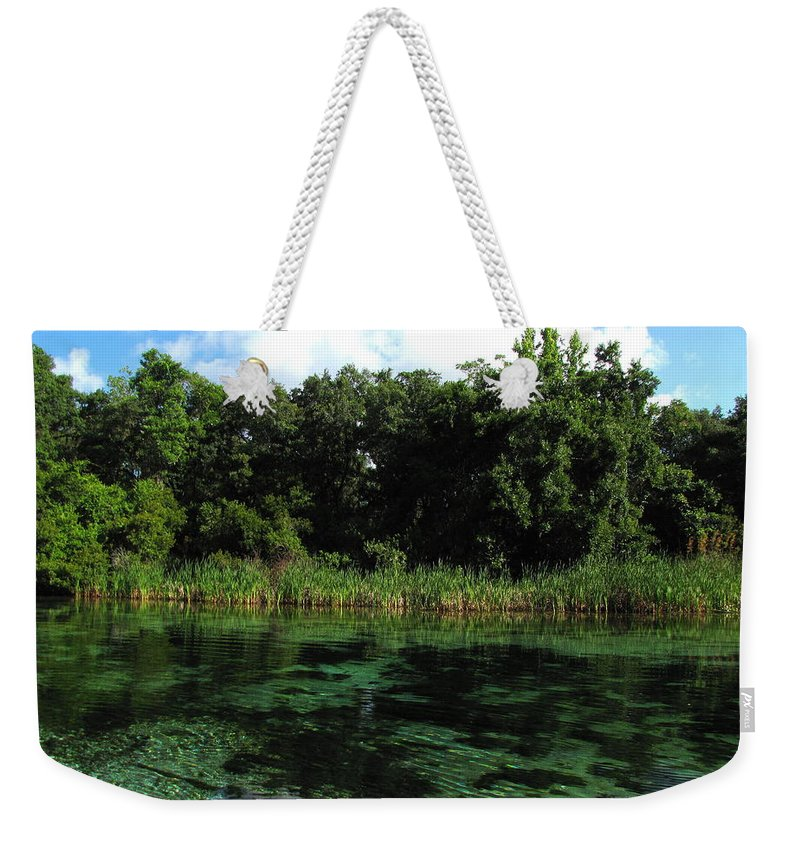 Weeki Wachee River Weekender Tote Bag featuring the photograph Weeki Wachee River by Barbara Bowen