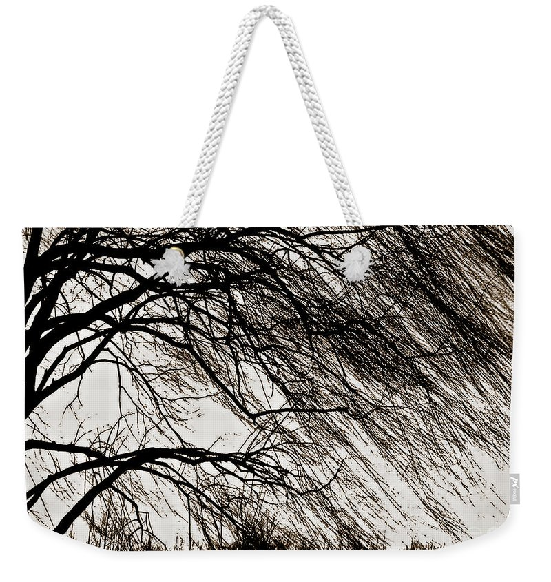 Weeping Willow Weekender Tote Bag featuring the photograph Weeping Willow Tree by Carol F Austin