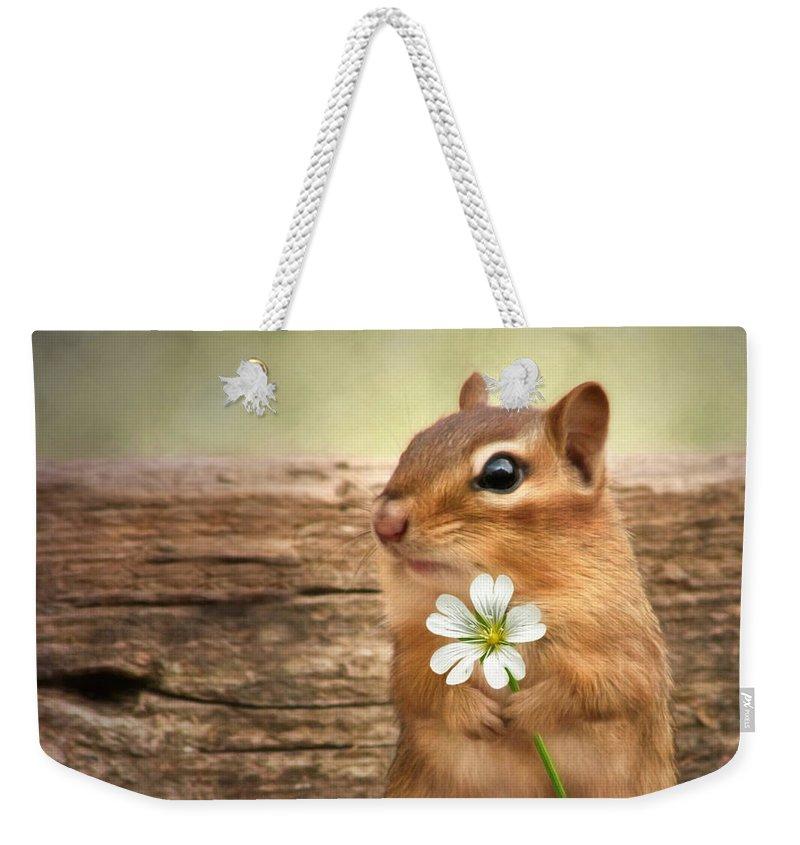 Squirrel Weekender Tote Bags