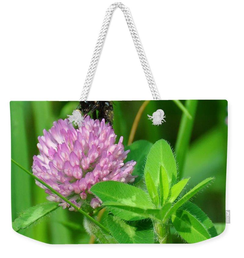 Western Honey Bee Weekender Tote Bag featuring the digital art Western Honey Bee On Clover Flower by Chris Flees