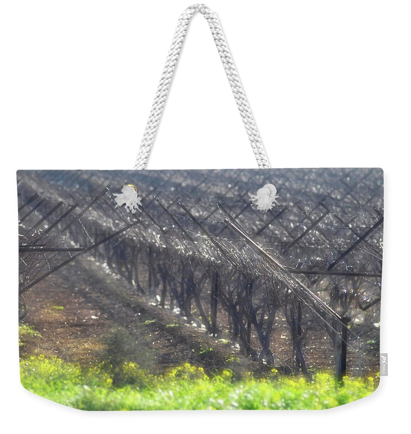 Wet Vineyard At Lachish Weekender Tote Bag featuring the photograph Wet Vineyard by Dubi Roman