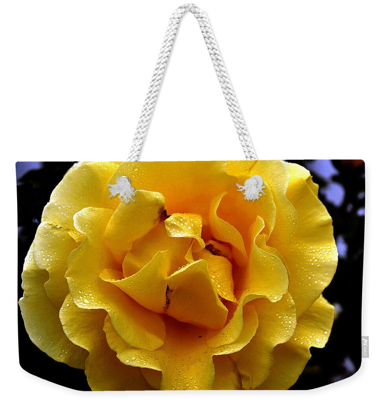 Clay Weekender Tote Bag featuring the photograph Wet Yellow Rose by Clayton Bruster