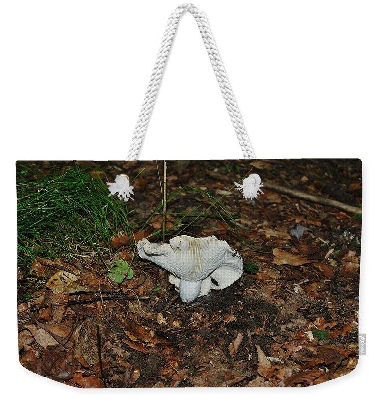Whaaaa Weekender Tote Bag featuring the photograph Whaaaa by Wanda Gancarz