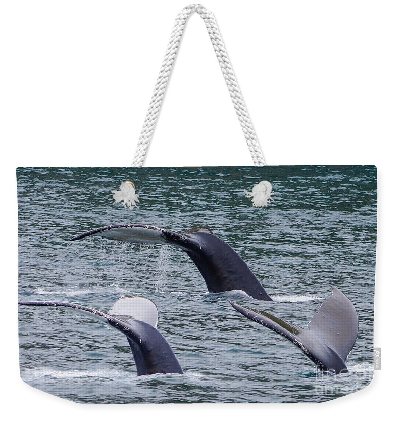 Alaska Weekender Tote Bag featuring the photograph Whale Of Tales by Jennifer White