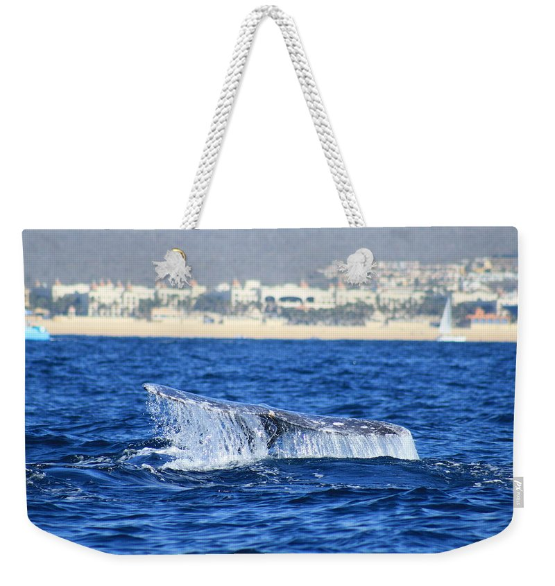 Whale Weekender Tote Bag featuring the photograph Whale Tail In Cabo by Ivy Brown