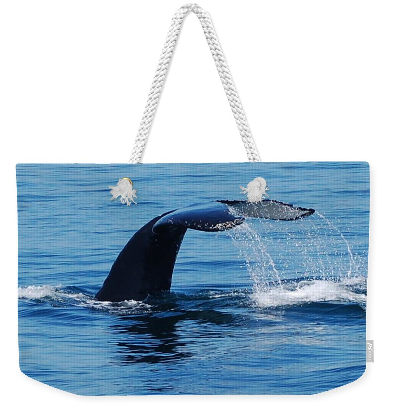 Whales Weekender Tote Bag featuring the photograph Whales Tale by Lisa Kane