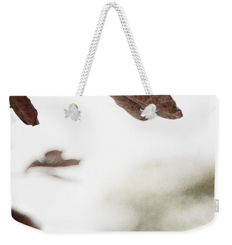 Leaves Weekender Tote Bag featuring the photograph What Is Left by Margie Hurwich