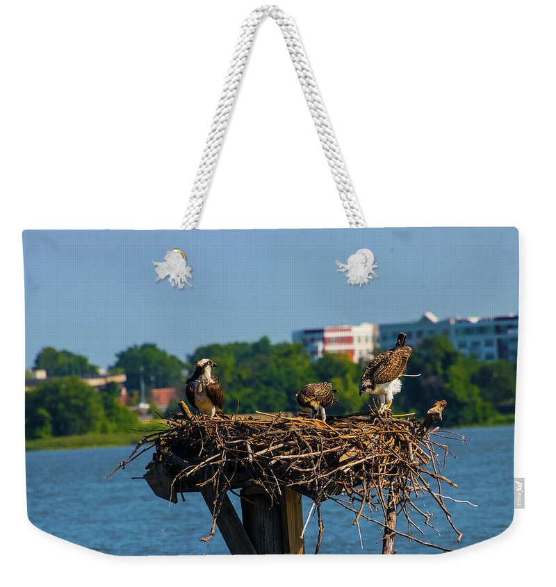 Weekender Tote Bag featuring the photograph When Nature Calls by Tony Umana