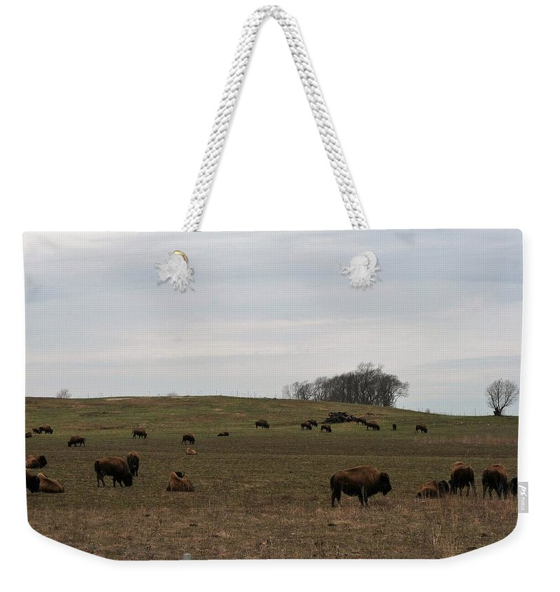 Bison Weekender Tote Bag featuring the photograph Where The Buffalo Roam 2 by Lew Wescott