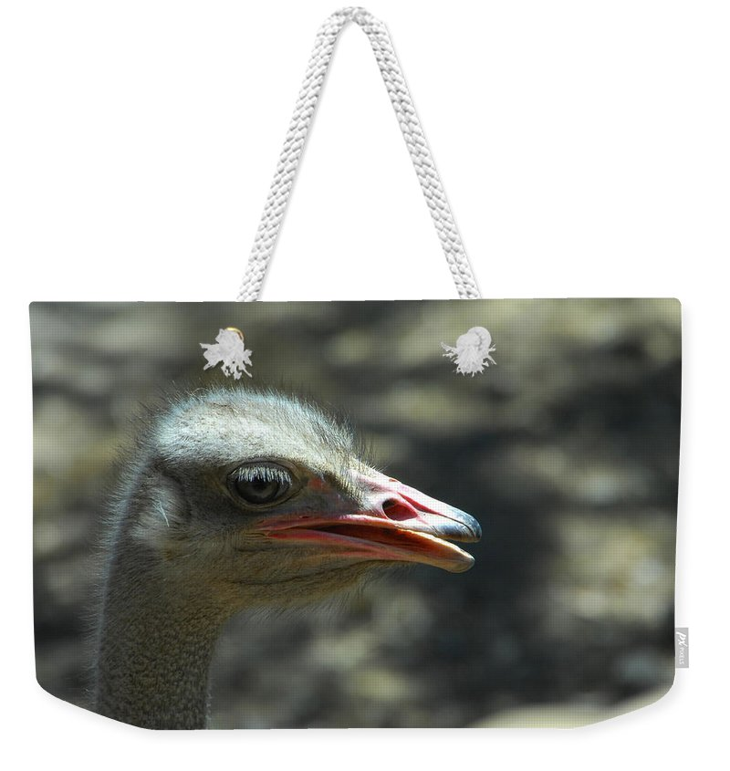 Ostrich Weekender Tote Bag featuring the photograph Where's The Sand by Donna Blackhall