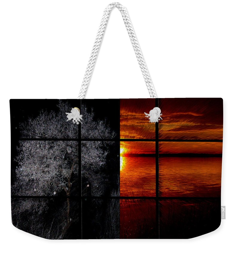 Trees Frost Cold Warm Sunshine Water Lake Shimmer Weekender Tote Bag featuring the photograph Which Side You On by Andrea Lawrence