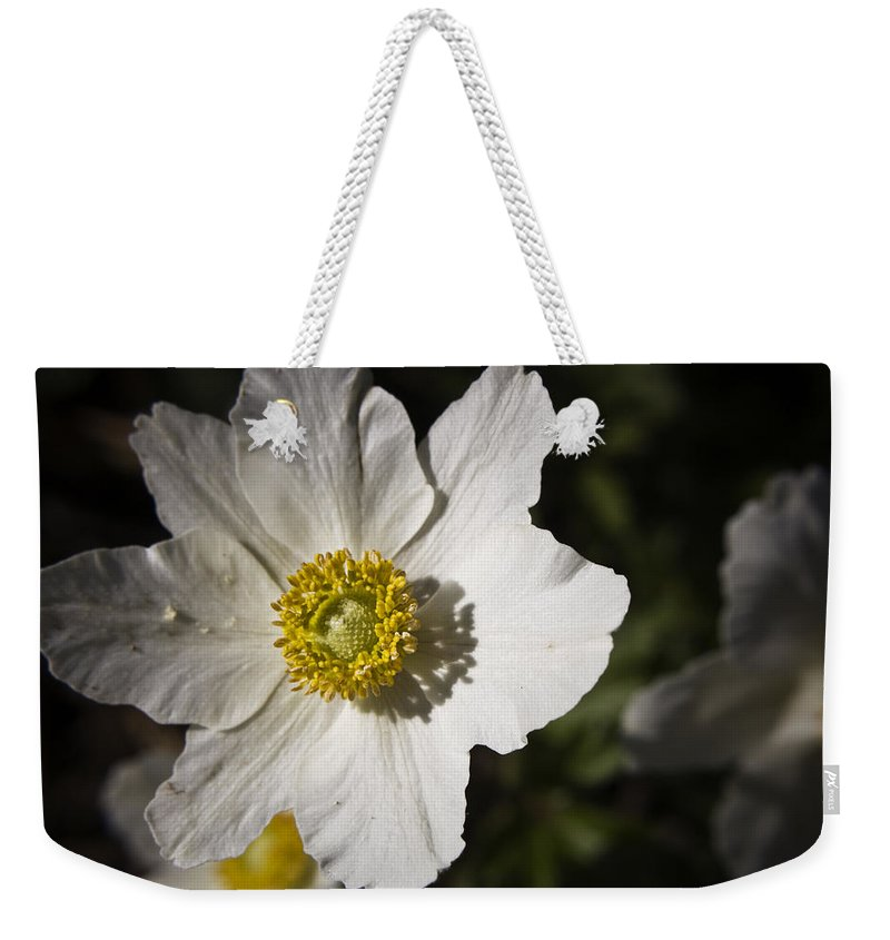 Flower Weekender Tote Bag featuring the photograph White Anemone by Teresa Mucha