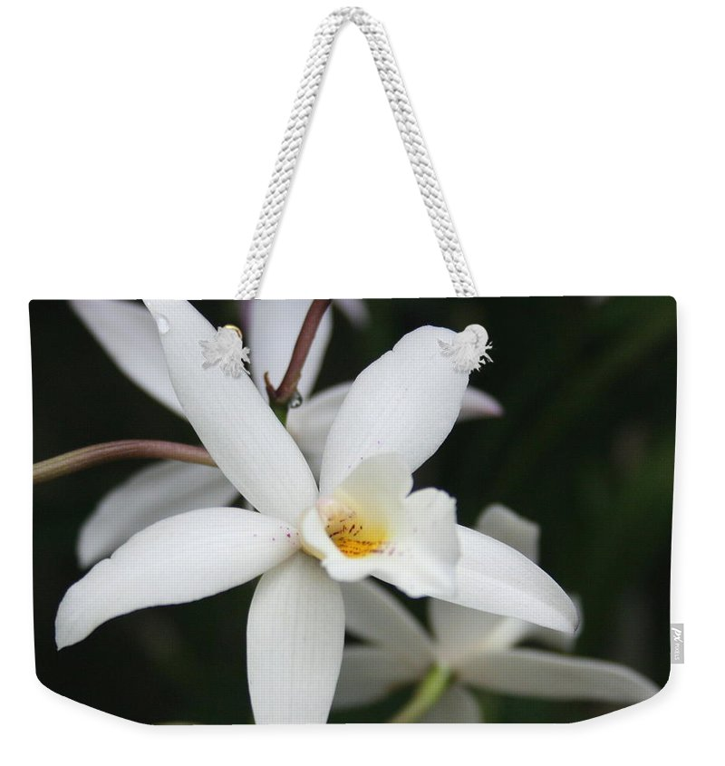 Flowers Nature White Macro Orchid Greenhouse Digital Photography Weekender Tote Bag featuring the photograph White Beauty Dove by Linda Sannuti